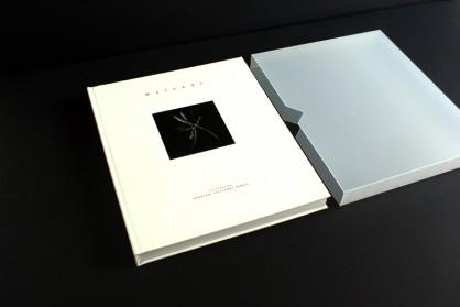 llibre Maillol 002
